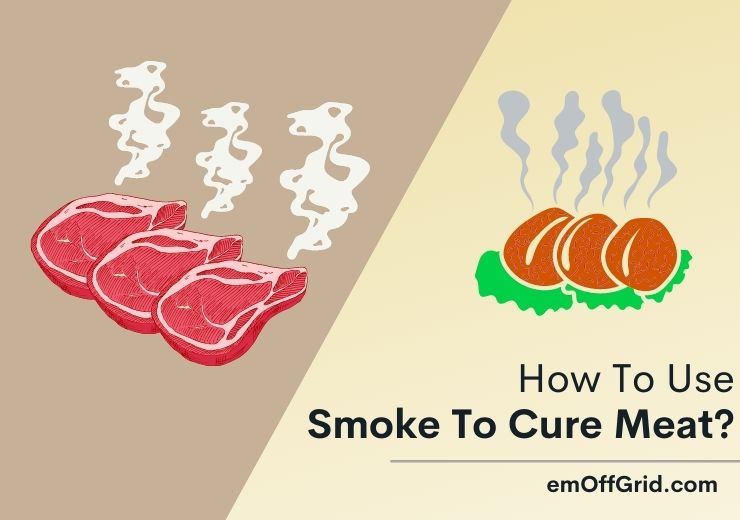 Use Smoke To Cure Meat?
