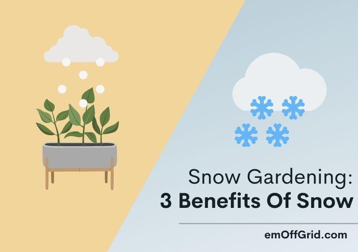 Snow Gardening