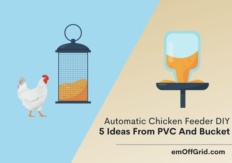 Automatic Chicken Feeder DIY