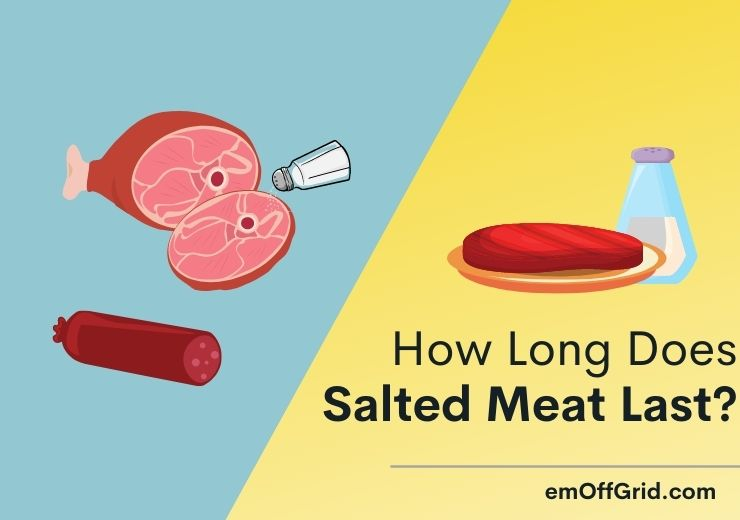 How Long Does Salted Meat Last